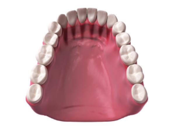 Arco dentário inferior