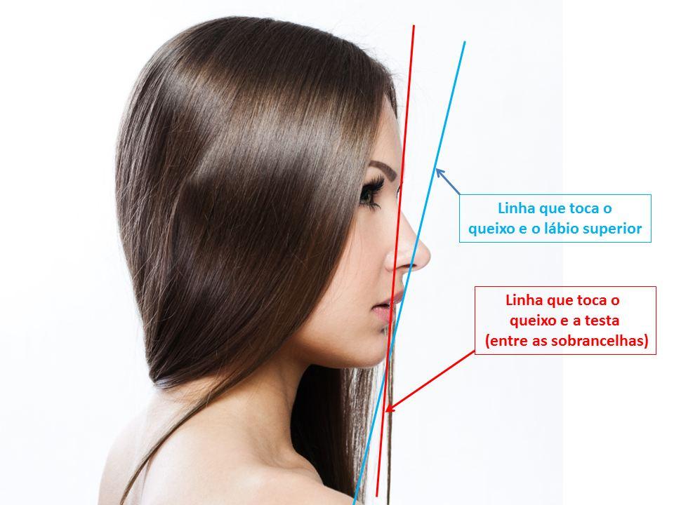 Orofacial # 49 - A Estética do Rosto Tem Uma Medida Definida? Parte 2: A Estética do Perfil do Rosto